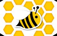 Les qualités organoleptiques et physico-chimiques des miels